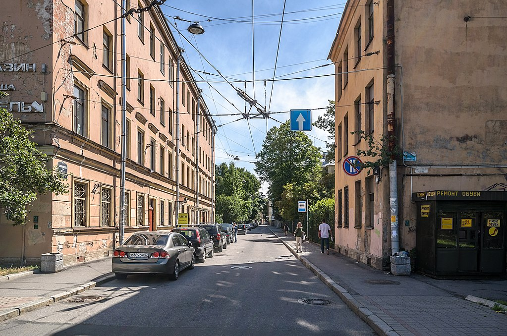 У перекрёстка Бармалеевой улицы и Чкаловского проспекта. Фото: Florstein (WikiPhotoSpace)