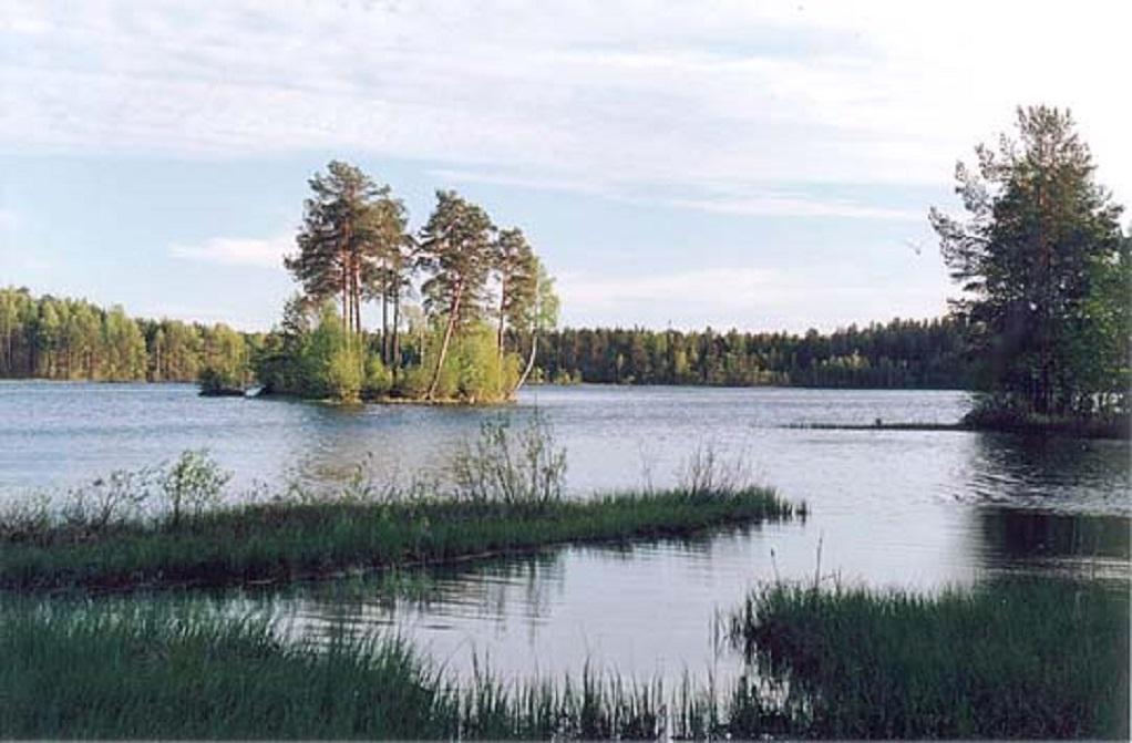 Медное озеро. Фото: beloostrov-spb.narod.ru