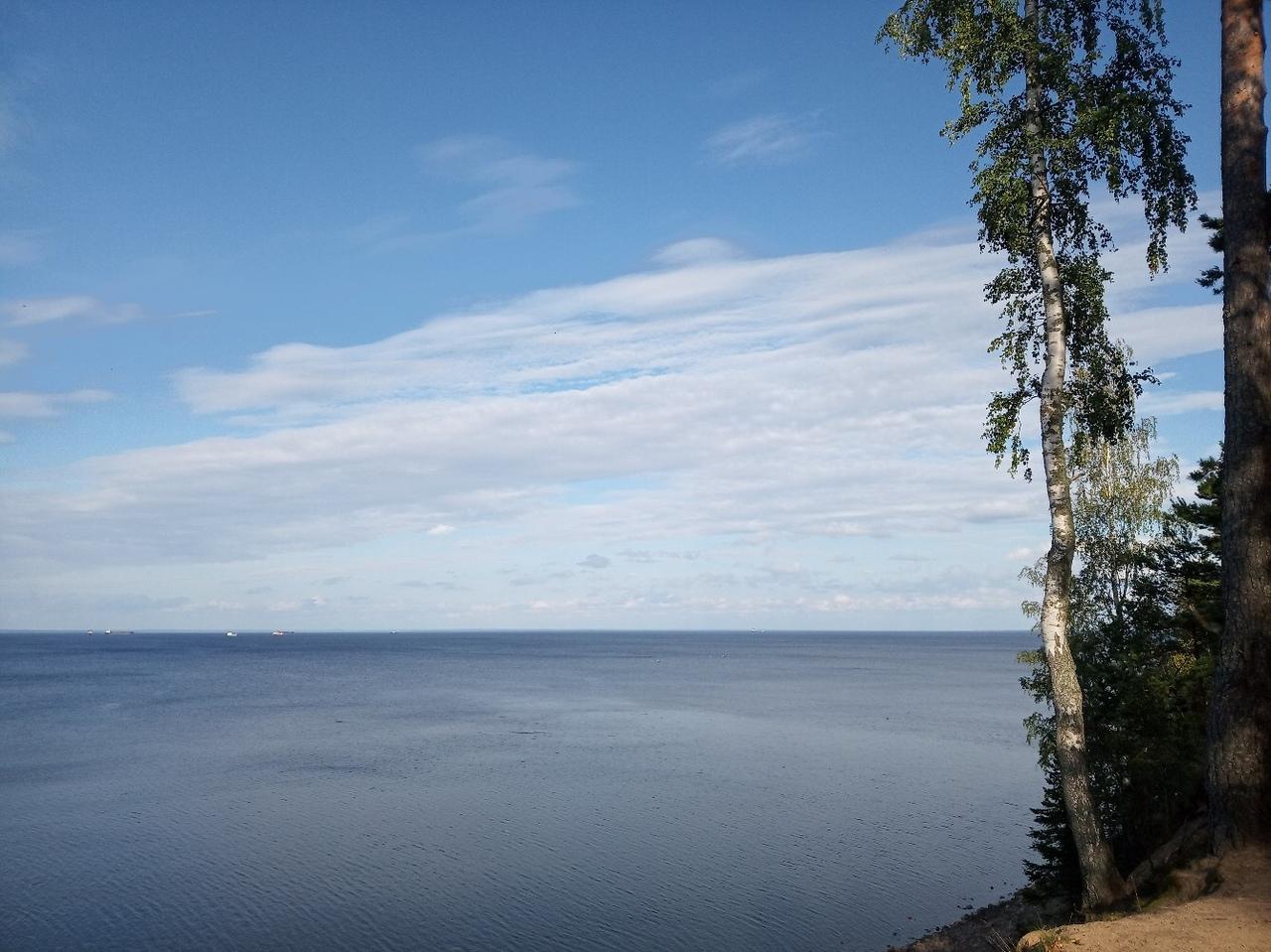 Финский залив. Фото  vk.com/fort_f