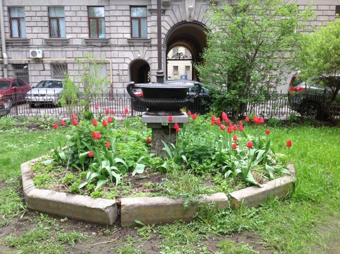 Сад Сен-Жермен - Санкт-Петербург. Фото: wikimapia.org