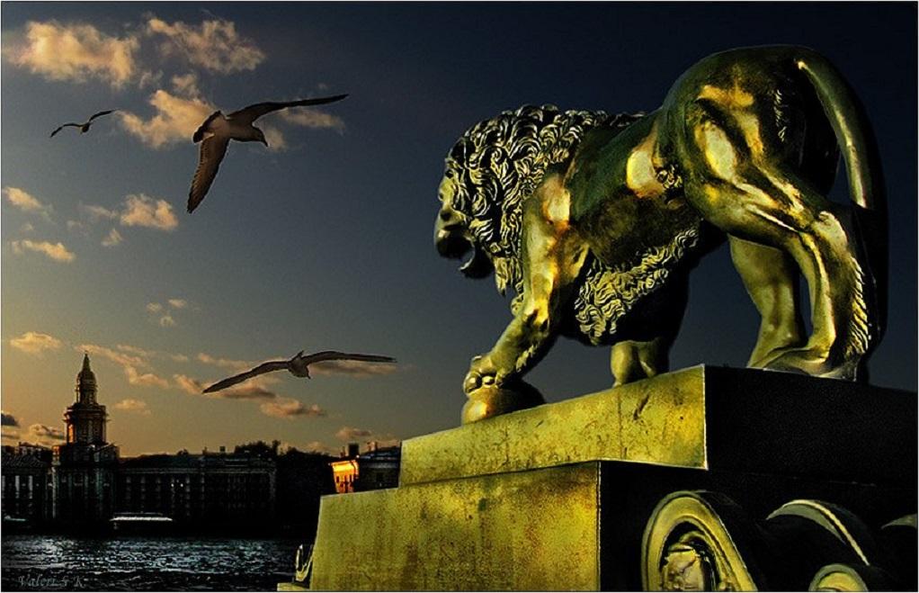 Лев у Адмиралтейства. Автор фото: Валерия Степанова-Казацкая