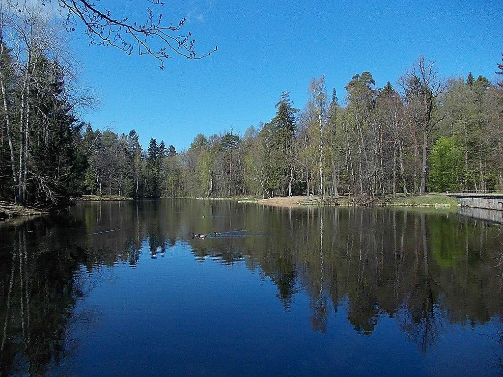 Большой пруд в парке. Фото: Uz1awa (Wikimedia Commons)