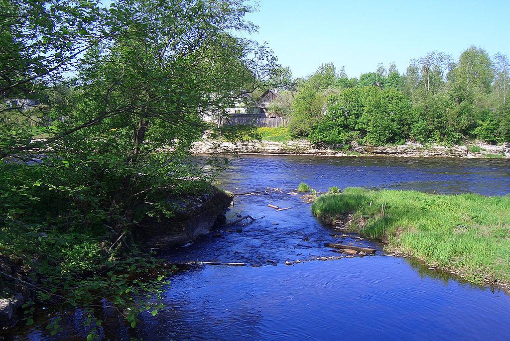 Река Кушелка. Фото: Евдокименко Игорь (Wikimedia Commons)