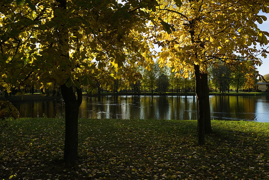 Московский парк Победы. Фото: Alexey Komarov (Wikimedia Commons)