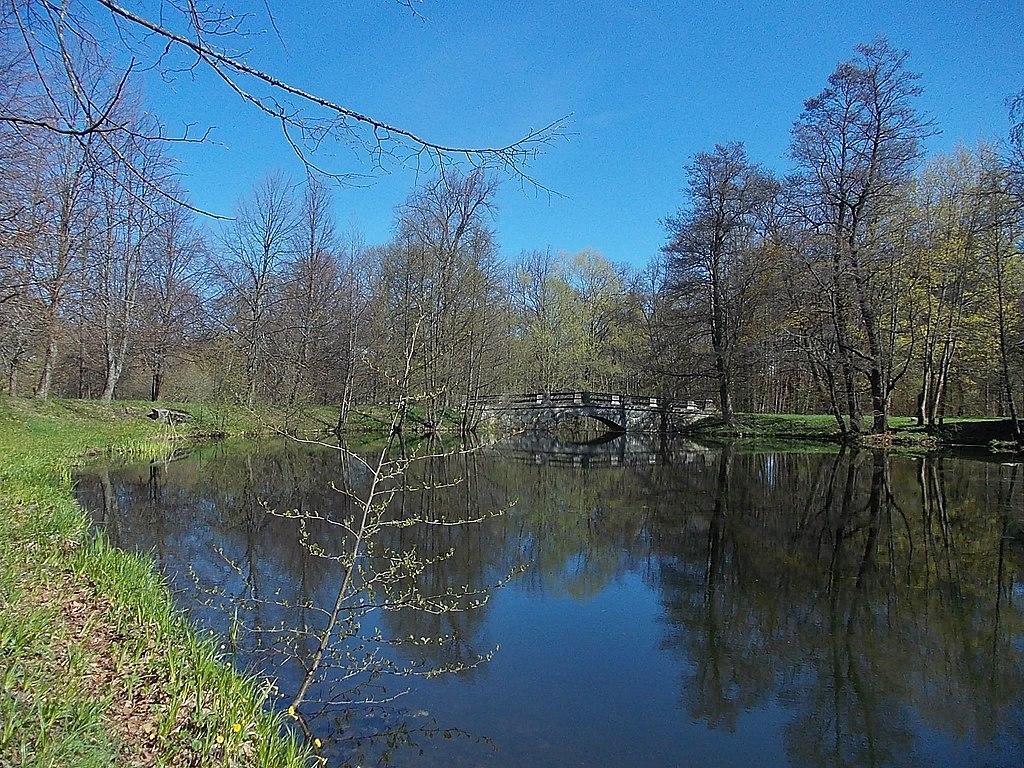 Огородный пруд в парке. Фото: Uz1awa (Wikimedia Commons)