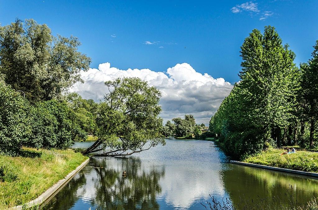Пруд в Московском Парке Победы в Санкт-Петербурге. Фото: Florstein (WikiPhotoSpace)