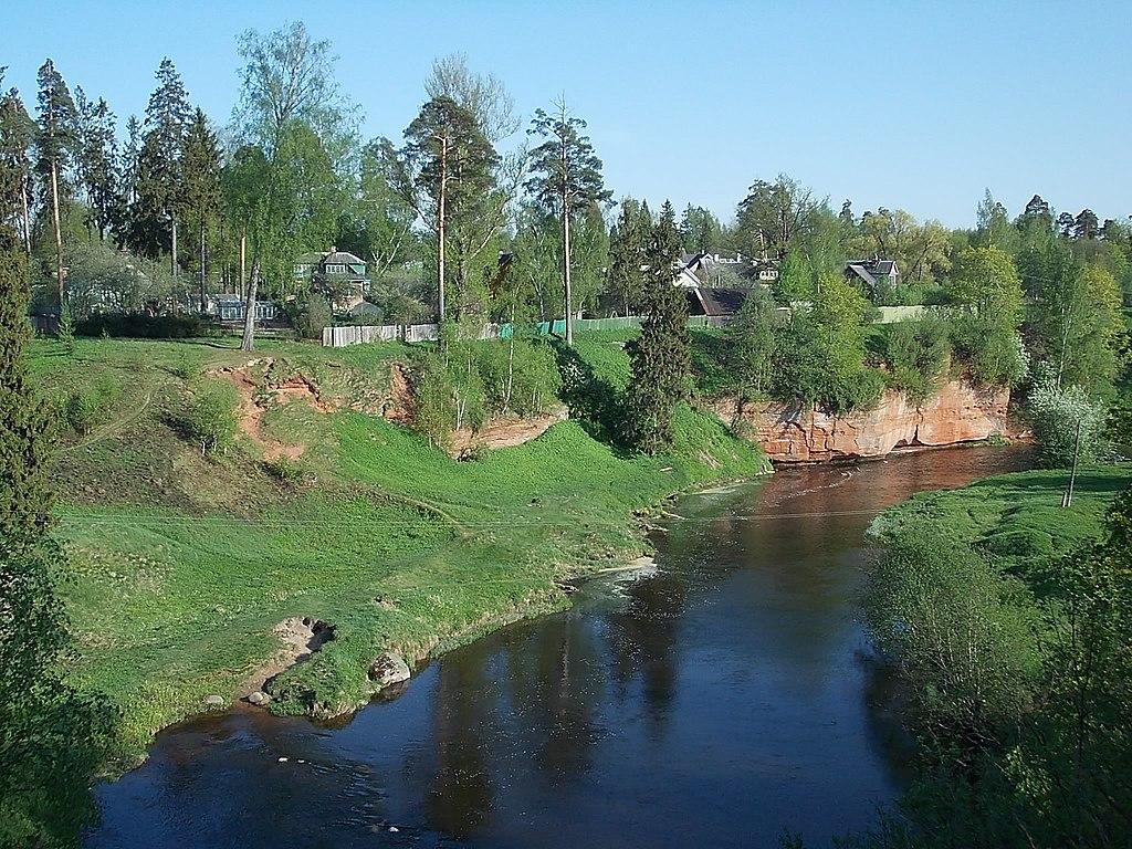 Река Оредеж в посёлке Сиверский. Фото: Uz1awa (Wikimedia Commons)