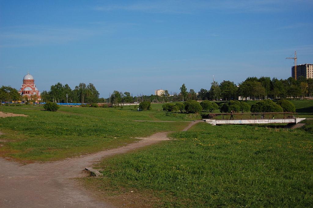 Муринский парк в Санкт-Петербурге. Фото: Igor Fedenko/Игорь Феденко (Wikimedia Commons)