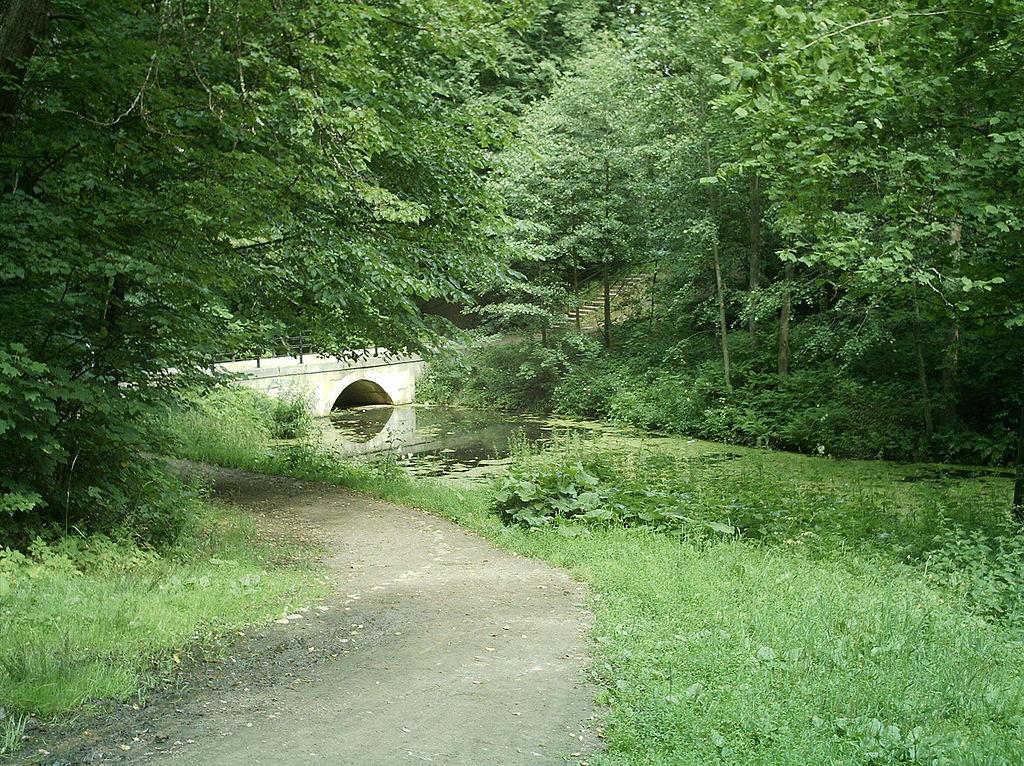 Парк Сергиевка. Пруд, мост с плотиной и подъем ко дворцу. Фото: grayhood (Wikimedia Commons)