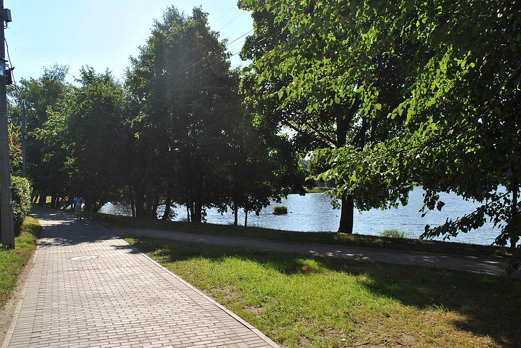 Сестрорецк. У озера Сестрорецкий разлив. Фото: w:ru:Kuffdam (Wikimedia Commons)