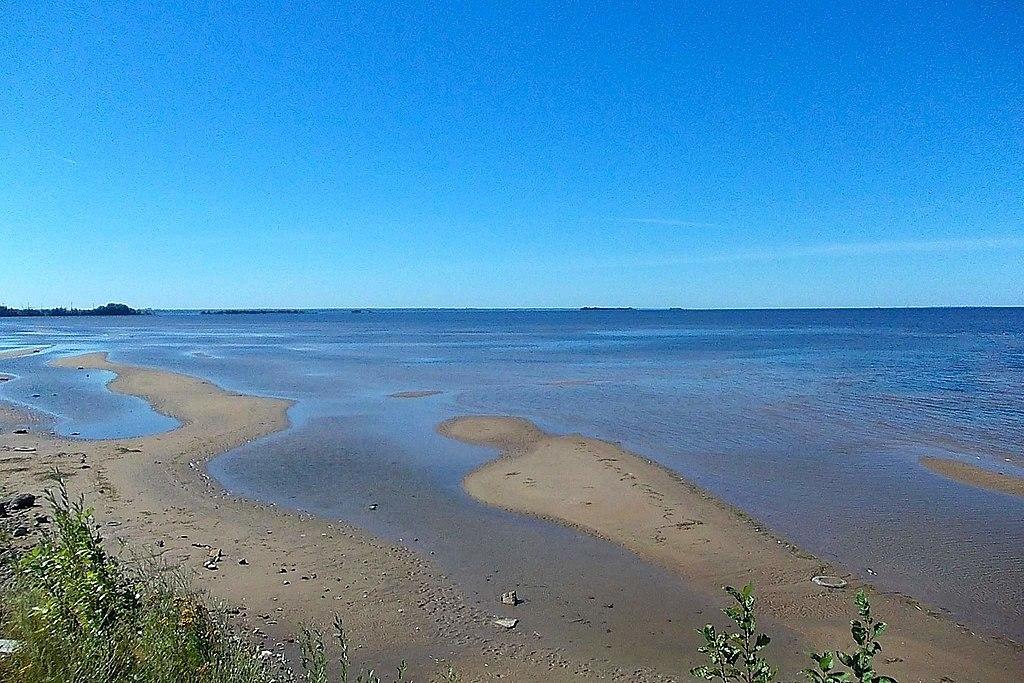 Вид с Канонерского острова на Финский залив. Фото: Uz1awa (Wikimedia Commons)