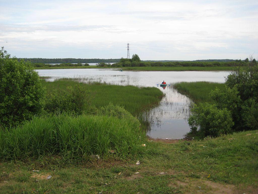 Лемболовское озеро. Автор фото: alzium (Wikimedia Commons)