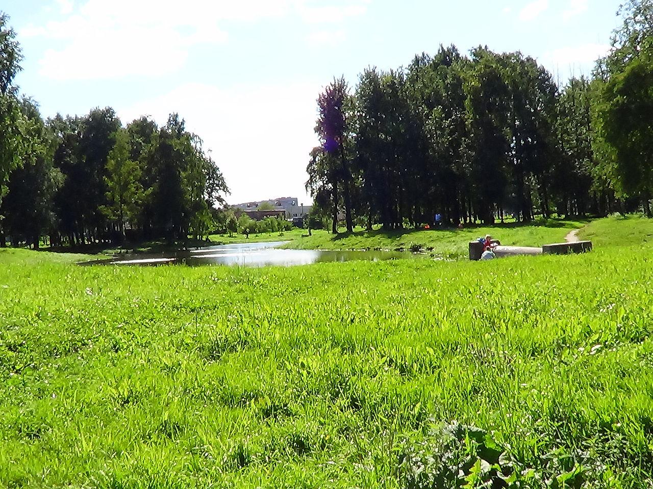 Товарищеский проспект, Парк имени Есенина. Автор фото: Peterburg23 (Wikimedia Commons)