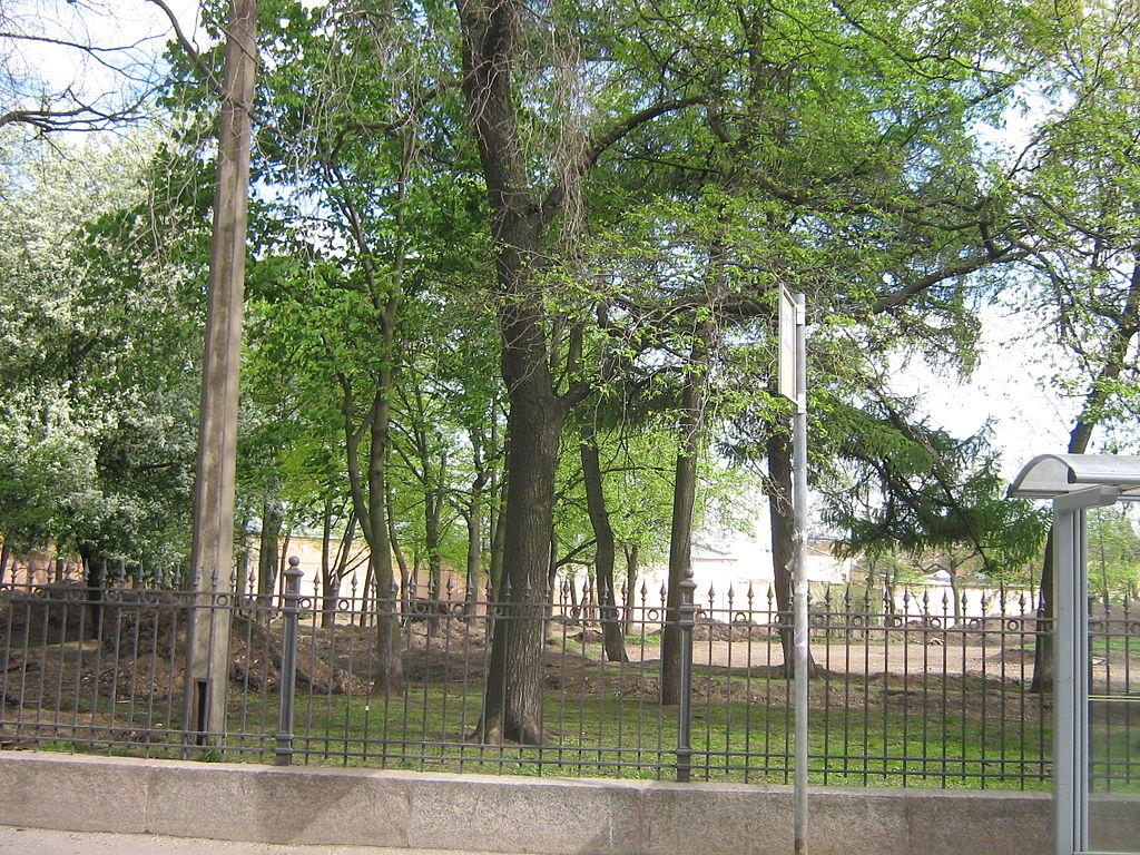 Сад имени Н. Г. Чернышевского. Мытнинская ул. Фото: Peterburg23 (Wikimedia Commons)