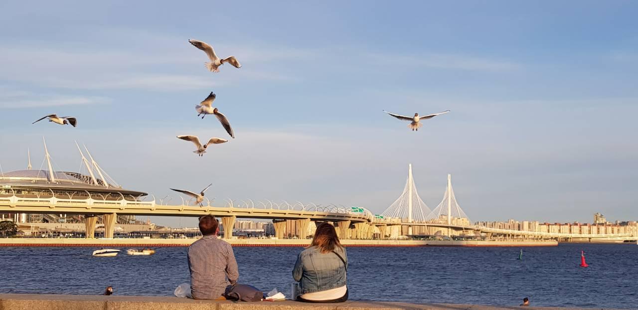 Парк 300-летия Санкт-Петербурга. Фото: vk.com/park300let_spb