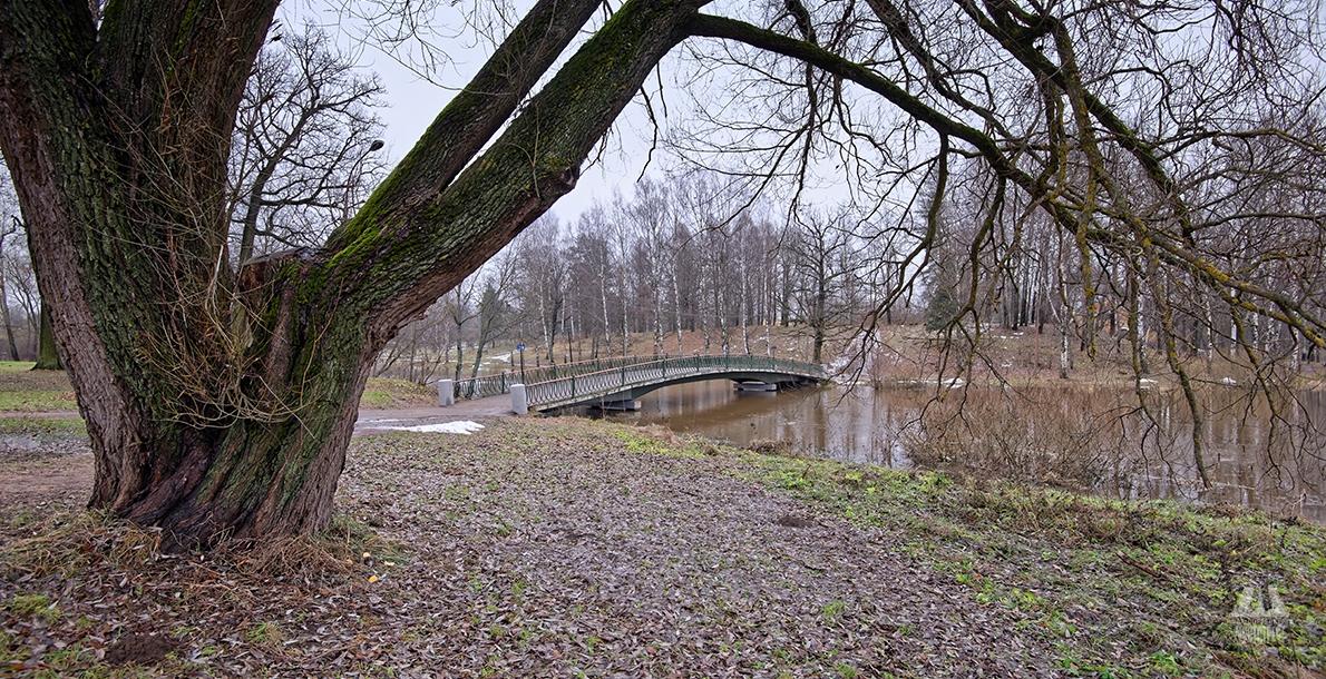 Горбатый мост в Павловске