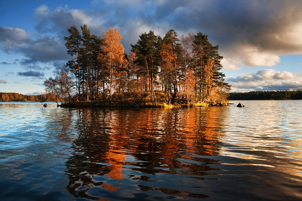 Вуокса. Окунёвый остров. Автор фото: Dmitry A. Mottl (Wikimedia Commons)