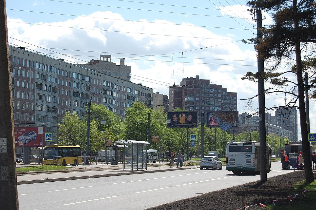 """Выбогский район. Парк """"Сосновка"""". Автор фото: Ingvar-fed (Игорь Феденко/Igor Fedenko) (Wikimedia Commons)"""