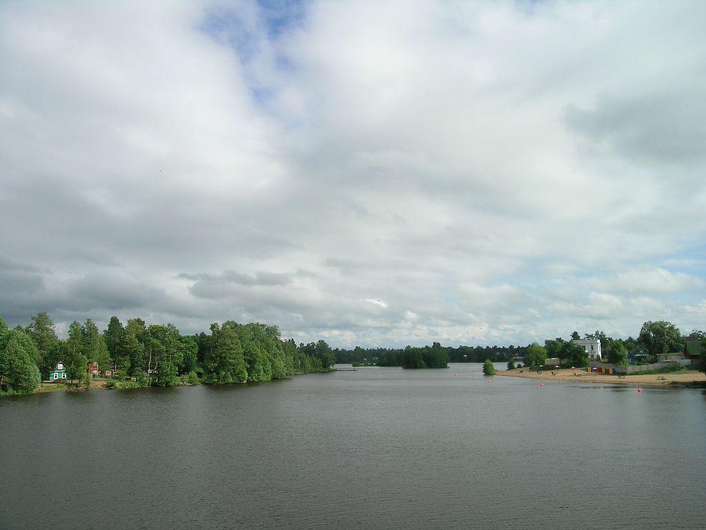 Сестрорецк, озеро Разлив.Фото: 13243546A