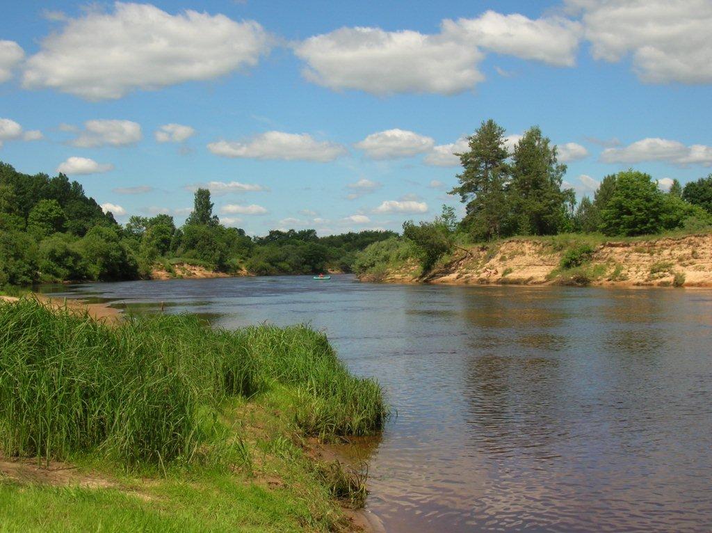 Река Луга. Фото: Смок Вавельский (Wikimedia Commons)