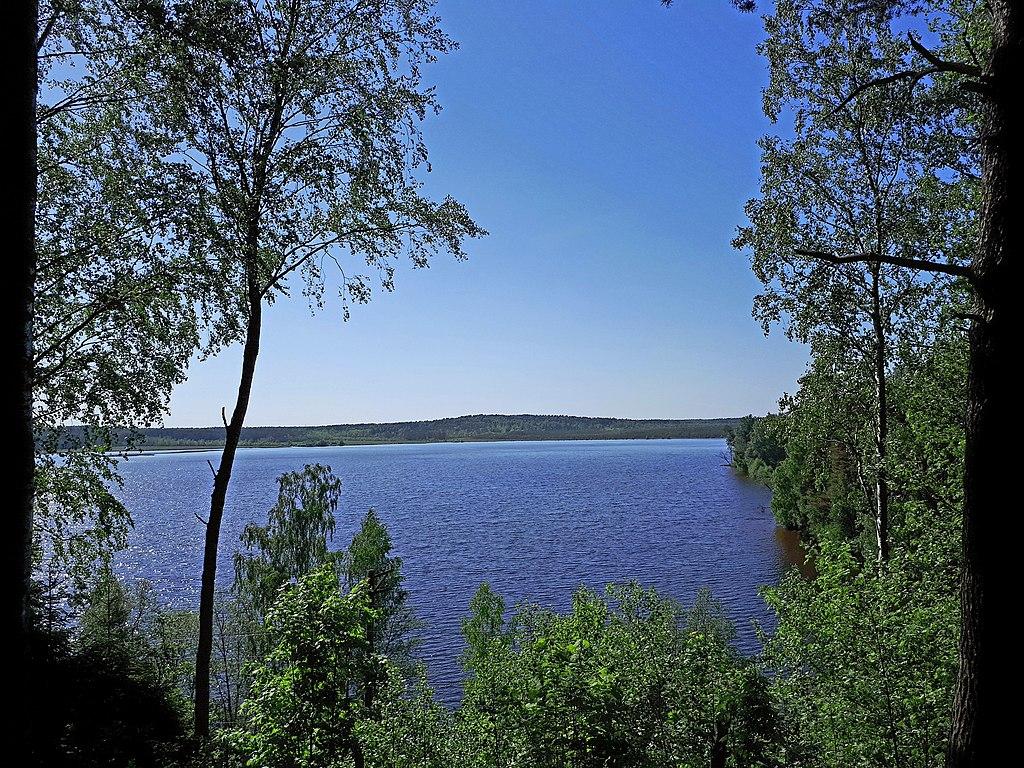 Кавголовское озеро. (вид с Токсовских высот). Фото: GAlexandrova (Wikimedia Commons)