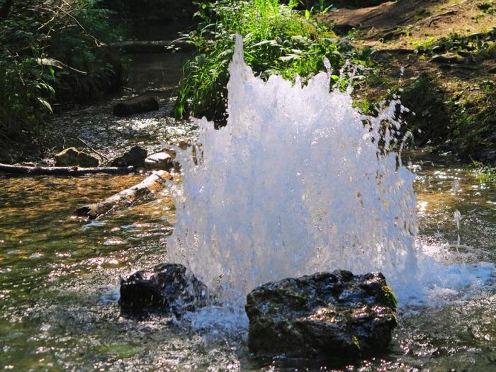 Гатчинские гейзеры, источник фото: http://www.ptmap.ru/lakes/2181 Автор: velly84