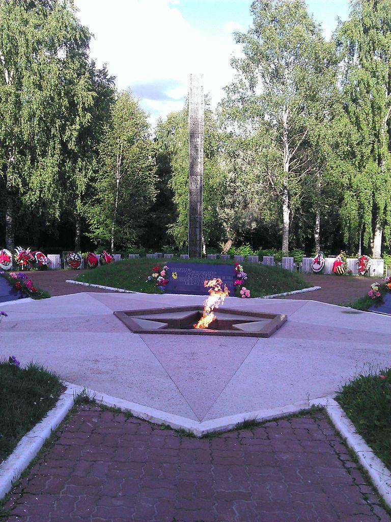 Мемориал памяти павших в 1941-1945 годах, вечный огонь в Кириши. Фото: Nonexyst