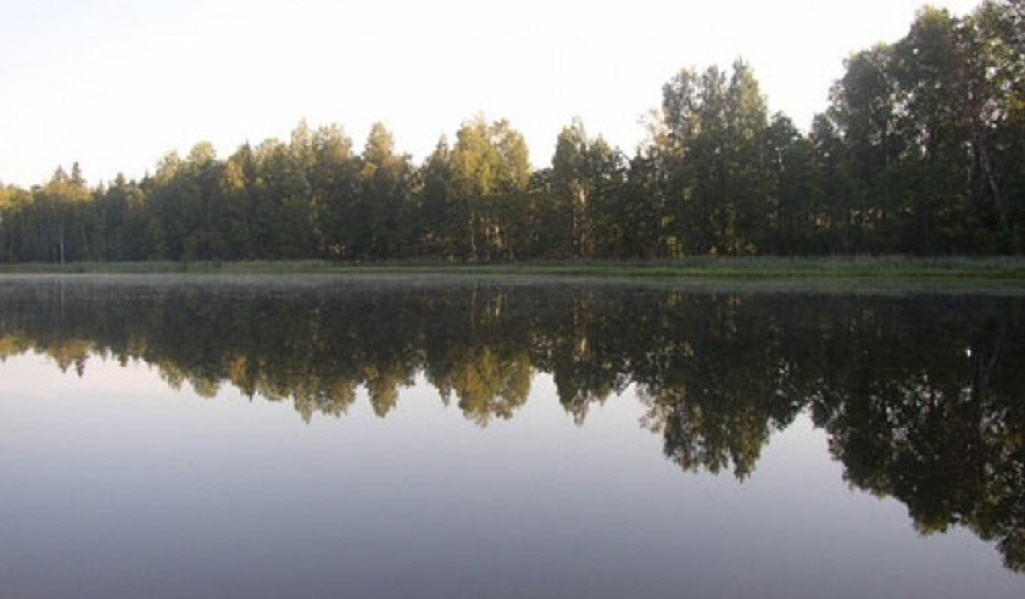 Озеро Долгое. Источник фото: ozera.info
