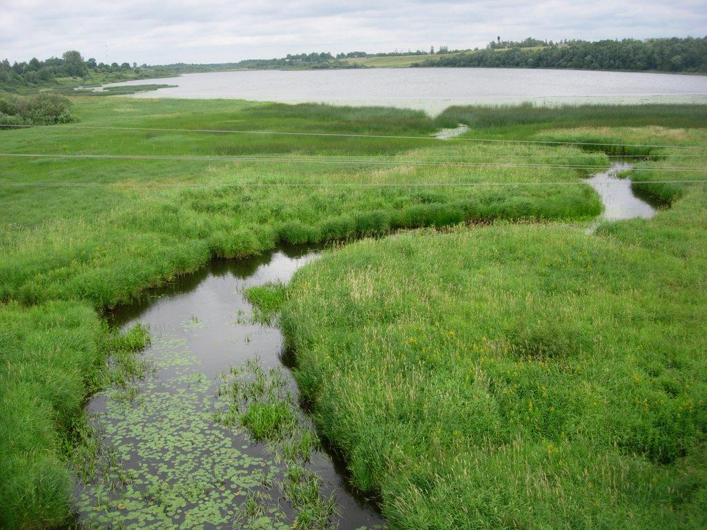 Река Рыденка. Озеро Фролёвское. Фото: mapsights.com