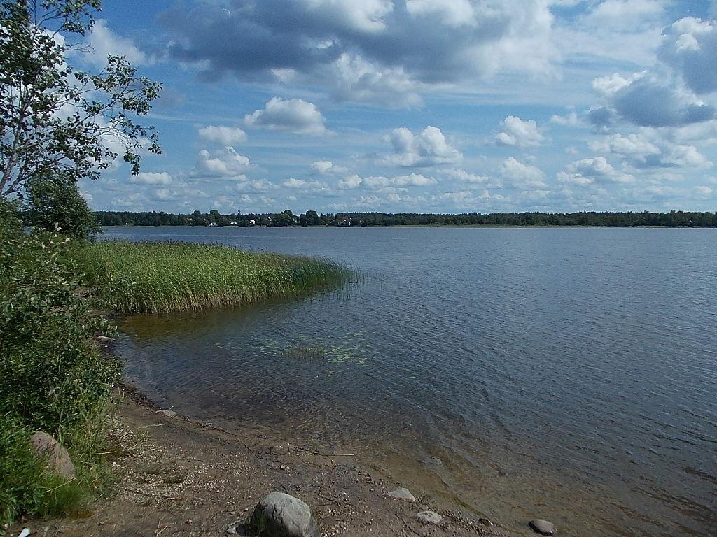 Орлинское озеро. Автор фото: Uz1awa (Wikimedia Commons)
