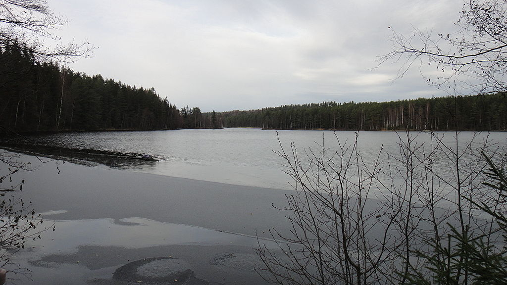 Большое Симагинское озеро. Автор фото: Bogdanov-62 (Wikimedia Commons)