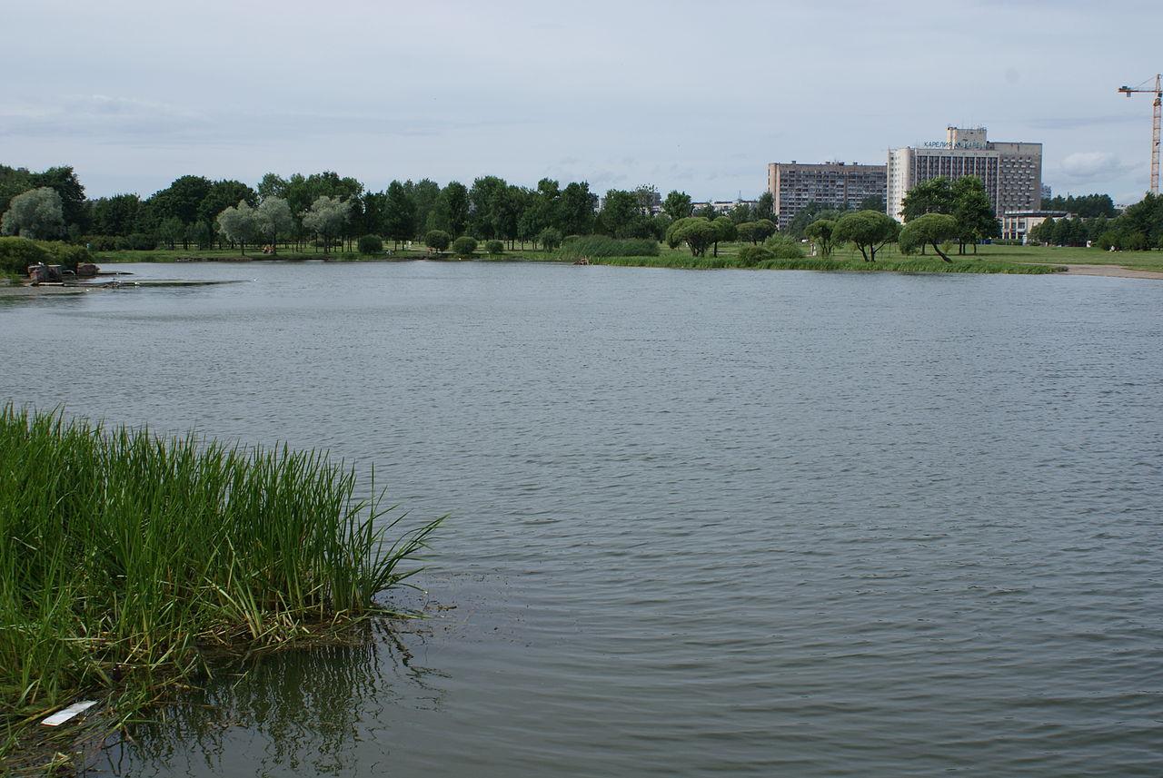 Один из прудов в Полюстровском парке. Автор фото: Vityavo (Wikimedia Commons)