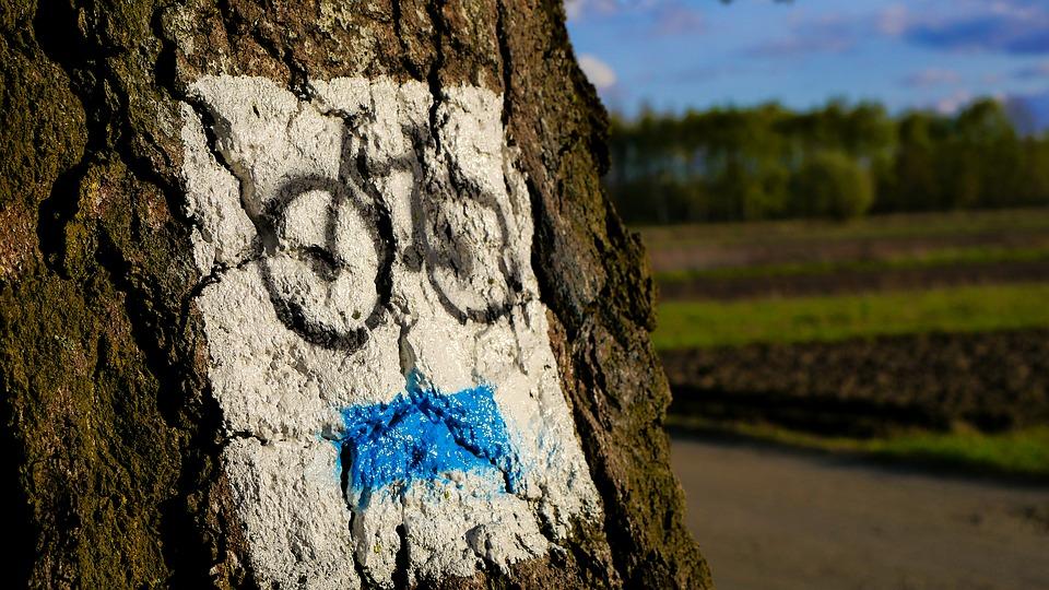 Велосипедный туризм. Фото: pixabay.com