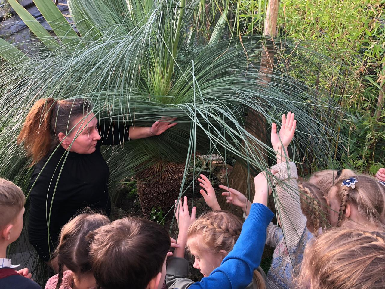 Экскурсии. Ботанический сад СПбГУ. Фото: vk.com/spbu.hortus
