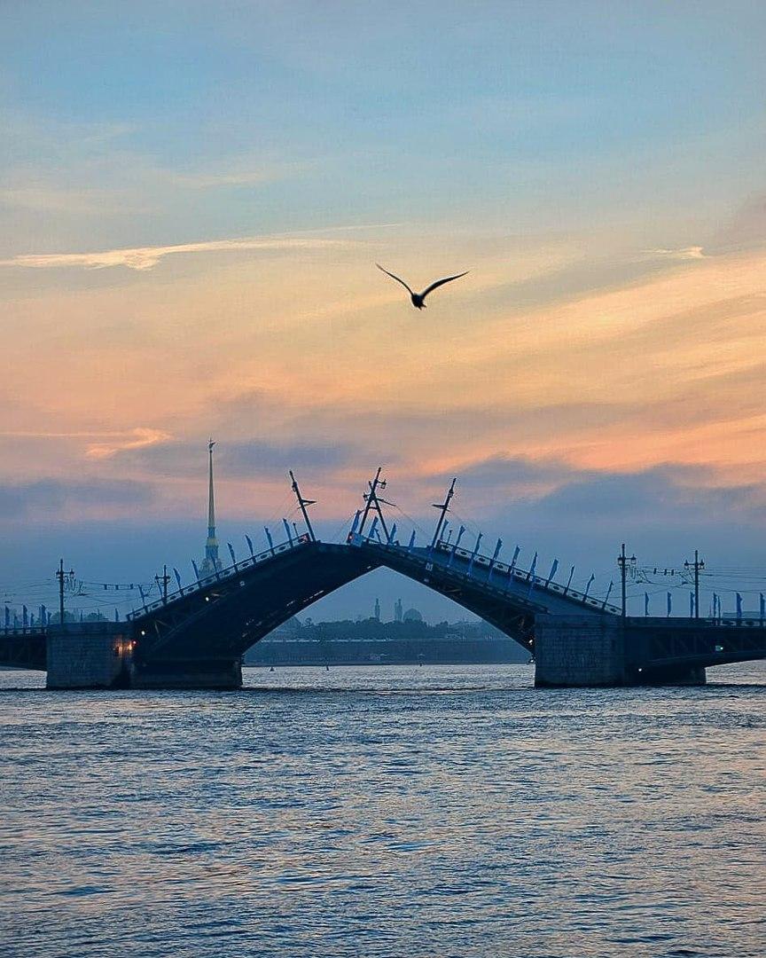 Дворцовый мост сводят поутру. Фото: vk.com/gorod_na_neve