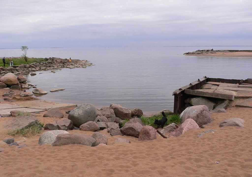 Финский залив. Зеленогорск. Фото: User:Kondratyev (Wikimedia Commons)