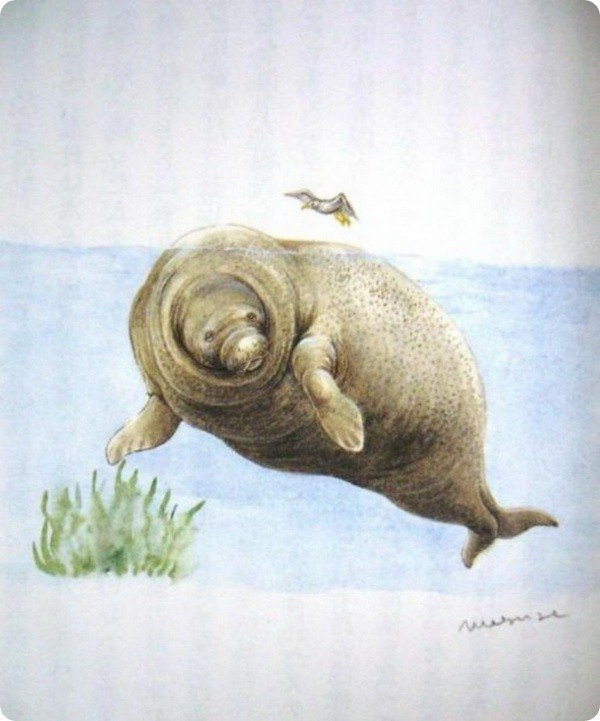 Выставка исчезнувших животных «Чёрная книга», источник фото: стена vk.com/