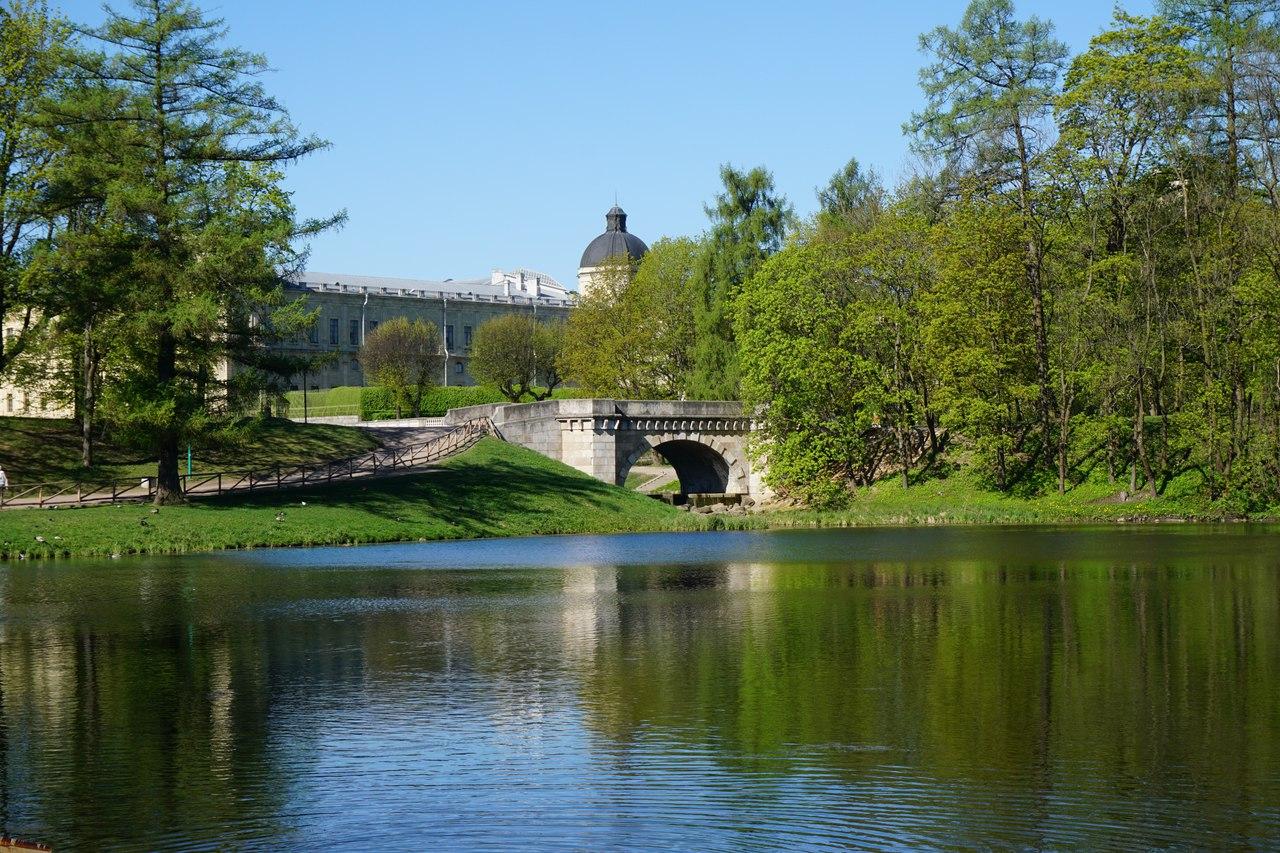 Гатчинский дворец, источник фото: https://vk.com/gatchina.palace