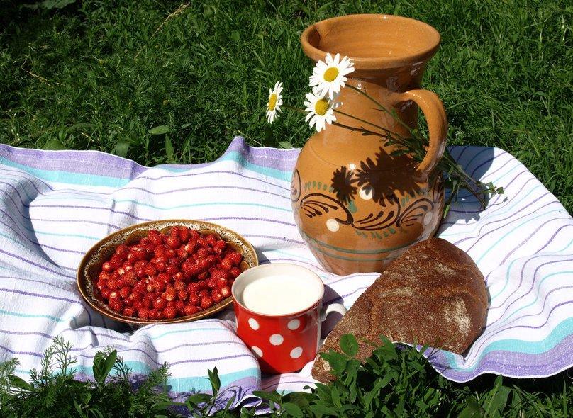 """""""Ромашковый фестиваль"""" — праздник для всей семьи, фото из ВК"""