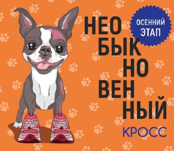 """""""Необыкновенный кросс"""" — благотворительный совместный забег Человека и Собаки"""