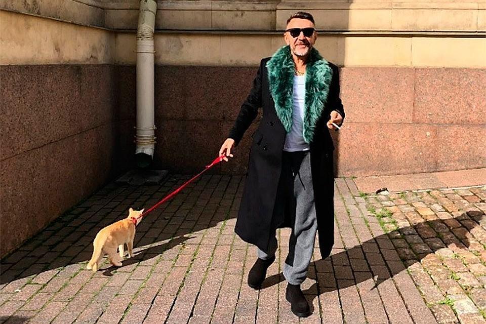 """Фотовыставка """"Главные котики Петербурга"""""""