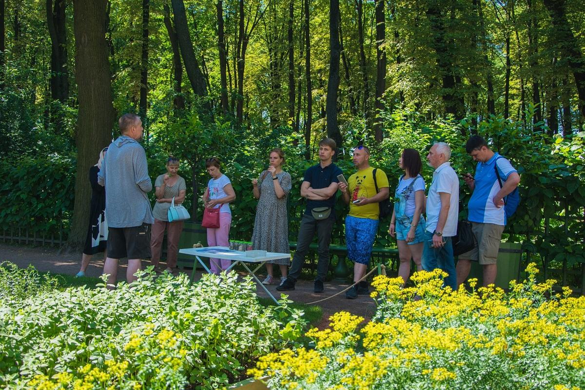 БЕСПЛАТНЫЕ БОТАНИЧЕСКИЕ ЭКСКУРСИИ. Фото: https://vk.com/rusmuseum.gardens