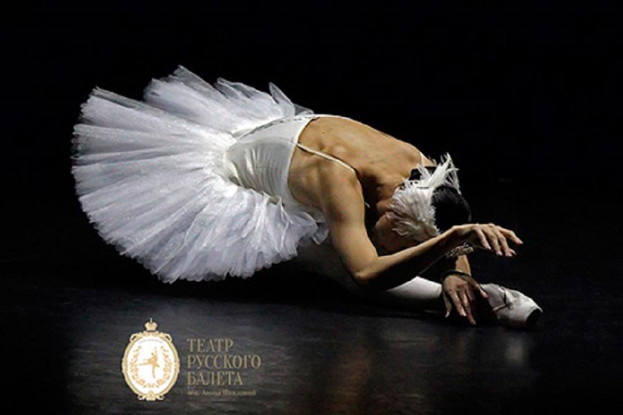 """Гала-концерт """"Шедевры мирового балета"""" в Эрмитажном театре"""