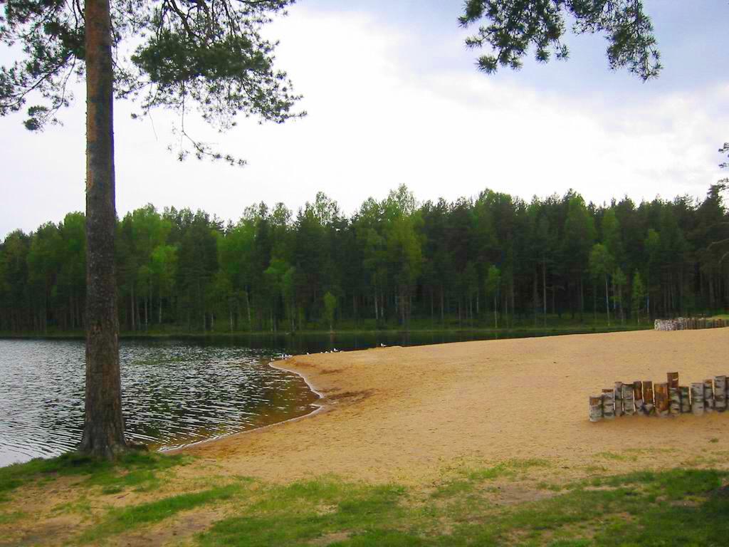 Коркинское озеро, Wikimedia Commons, Автор: Valeriy10f