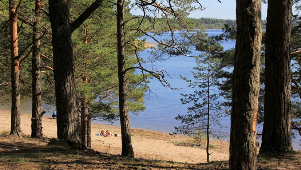 Единственное солёное озеро Ленинградской области
