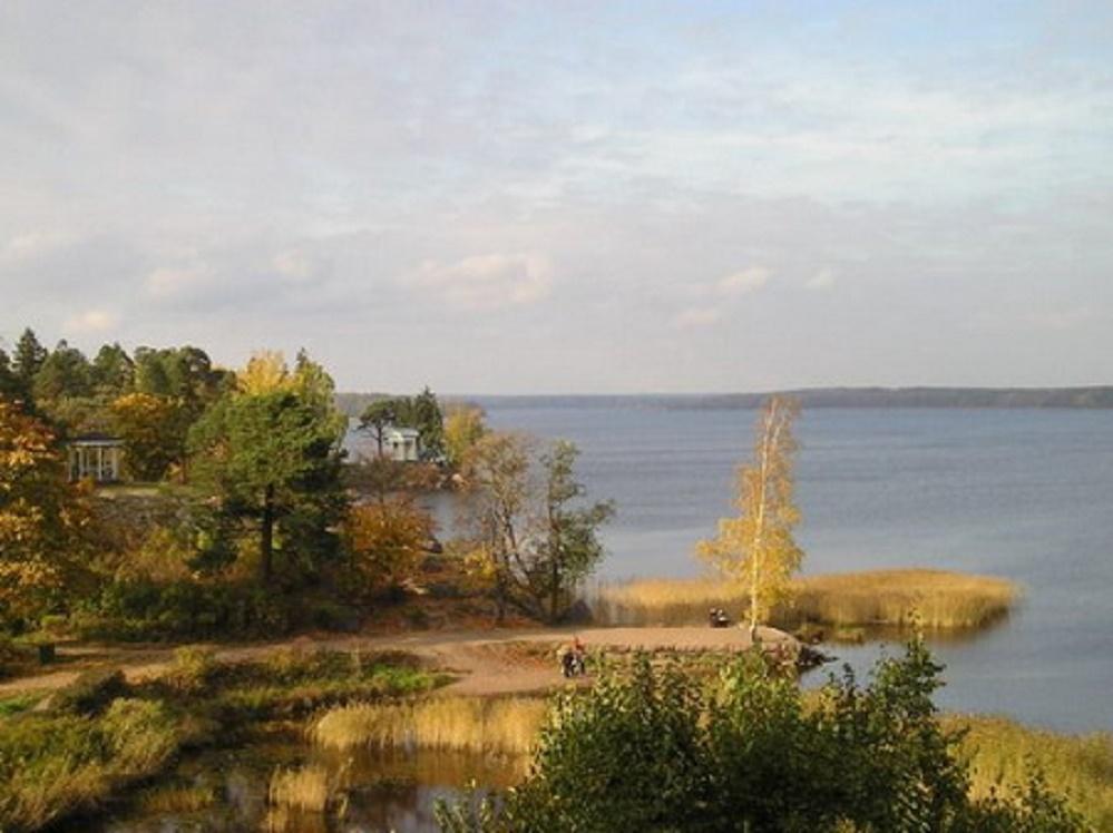 Парк Монрепо осенью. Автор фото: Сергей Неманов