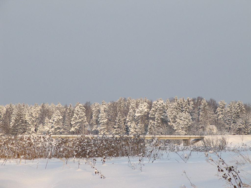 Мост через р. Оредеж. Фото: Andrey burtsev (Wikimedia Commons)