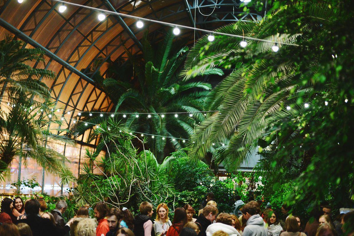"""Оранжерея Таврического сада. Кафе """"Orangery"""" Лимонад-оранжерея на 2 этаже"""