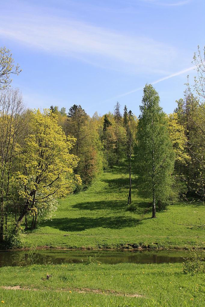 Дудергофские высоты. Фото: Line Gausvalter (Wikimedia Common)