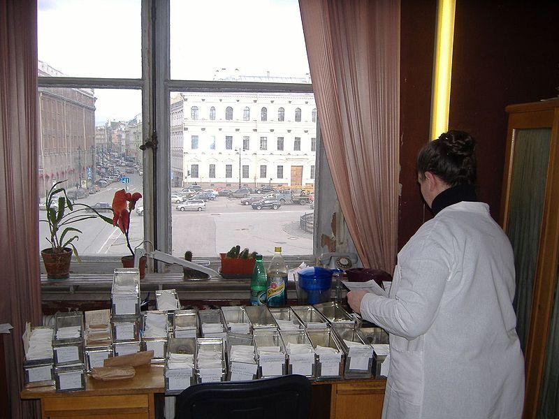 Вид на Исаакиевскую площадь из окна ВИР. Автор фото: Luigi Guarino